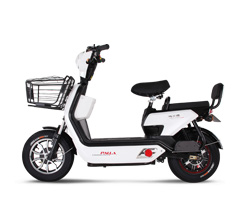 新大洲电动车-可猛-2